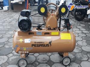 Máy nén khí dây đai Pegasus 2HP TM - V - 0.17/8 - 70L được sản xuất dựa trên những yêu cầu khắt khe về kỹ thuật và công nghệ nên luôn được đánh giá cao